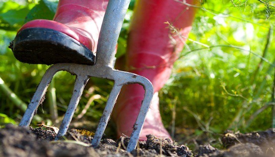 10 Tips For Spring Gardening On The Cheap