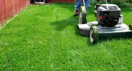 7 Ways to Cut the Cost of Yard Maintenance