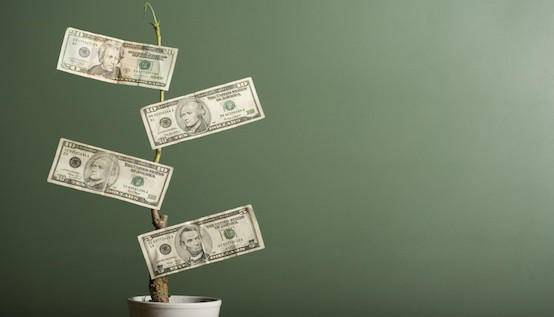The Difference Between Debt and Equity Financing for Your Small Business :: Mint.com/blog
