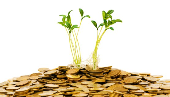 Does Copycat Investing Really Work? :: Mint.com/blog