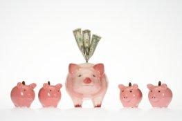 Mint Blog Family Budget 6.4