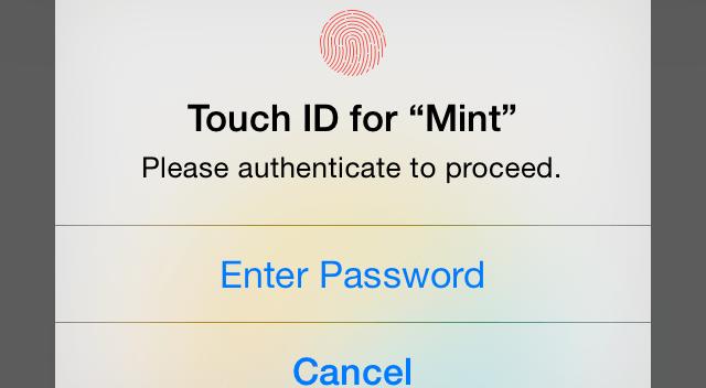 TouchID_Mint_Alert_View copy