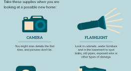 Property Detective: A Checklist for Renters (Infographic)