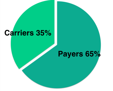 Carriers vs Payers Debt Pie Chart