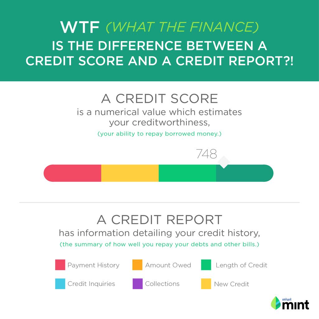 What the FInance: Credit Score vs Credit Report