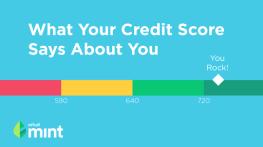 Mint Credit Score