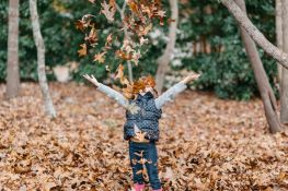 Fall into good credit habits