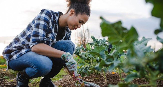 gardening-tips-that-save-you-green-hero