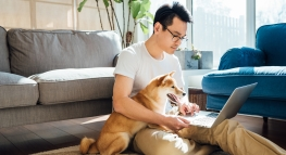 6 Tips to Stay Productive (and Sane) While Working From Home