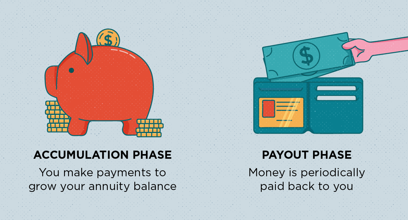 Image of piggy bank and a wallet with text describing differences between annuity phases