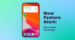 NEW Mint Feature Highlight: Budget Widget on iOS
